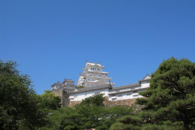 国宝四城に新たな城が